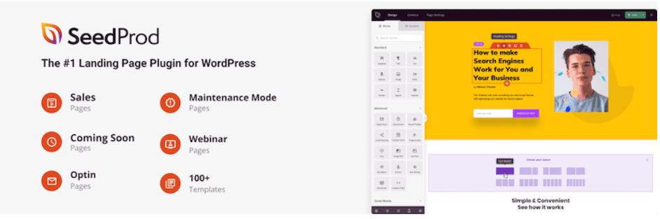 SeedProd wordpress plugin for business website
